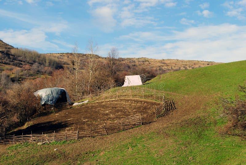 Recinto per bestiame per le pecore fotografia stock