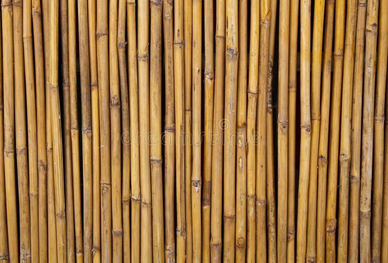 Recinzione del comitato di bambù fotografia stock