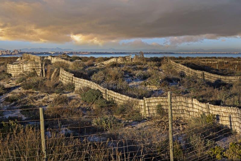 Recinzione per fissare le dune della spiaggia fotografie stock
