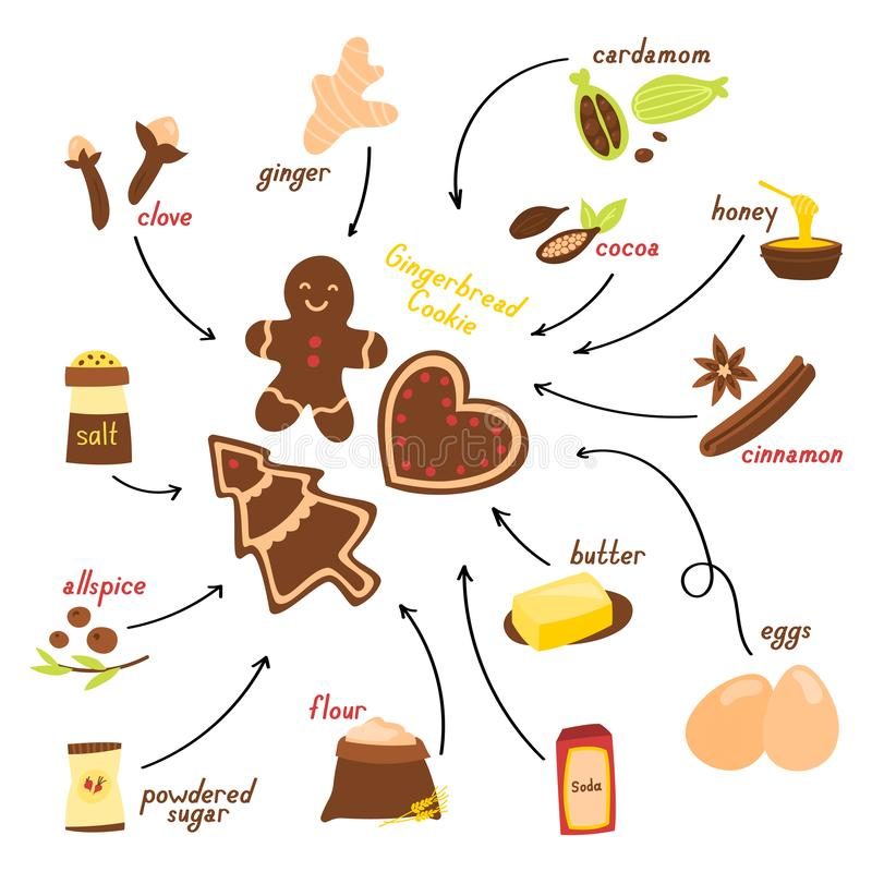 Recipe for making gingerbread cookie in English, vector illustration on a white background.  stock illustration
