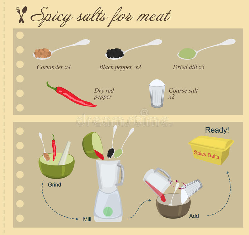 Recipe of Spicy Salts for Meat. Vector stock illustration