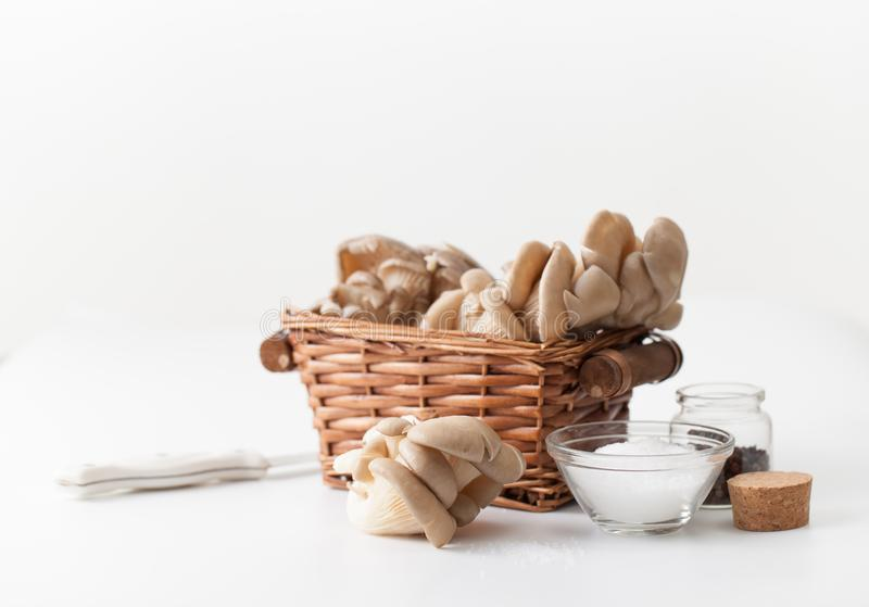 Raw oyster mushrooms on white background. Recipes of oyster mushrooms with salt, Bay leaf, pepper on a white table. Place for text royalty free stock images