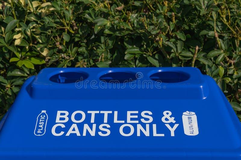 Recipiente di riciclaggio di plastica blu che si siede contro i cespugli sempreverdi immagini stock libere da diritti