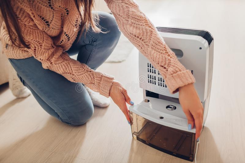 Recipiente em mudança da água da mulher do desumidificador em casa Umidade no apartamento Secador moderno do ar imagem de stock royalty free