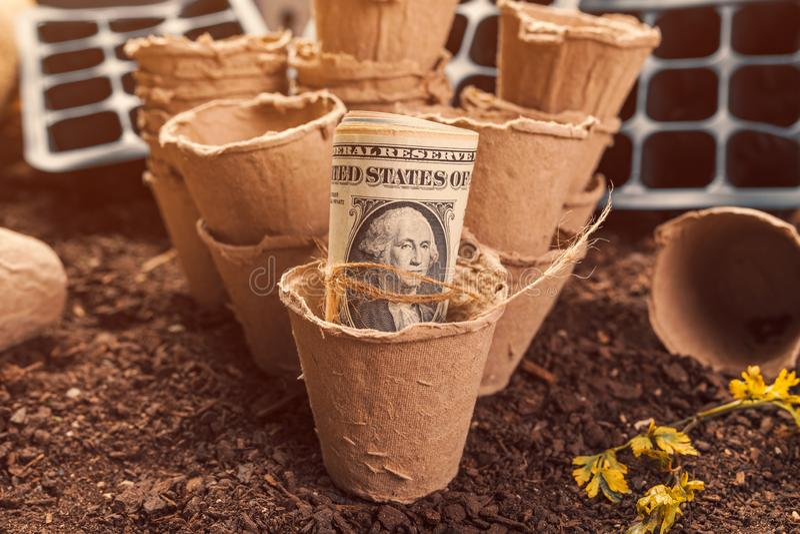 Recipientes biodegradáveis do solo do potenciômetro da turfa e de dólar americano cédulas imagem de stock royalty free