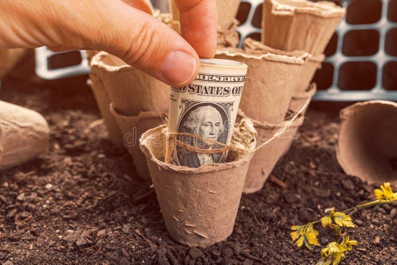 Recipientes biodegrad?veis do solo do potenci?metro da turfa e de d?lar americano c?dulas fotos de stock royalty free