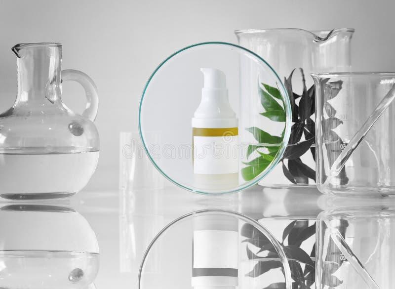 Recipientes cosméticos da garrafa com as folhas ervais verdes e produtos vidreiros científicos, foco no pacote vazio da etiqueta  fotos de stock royalty free