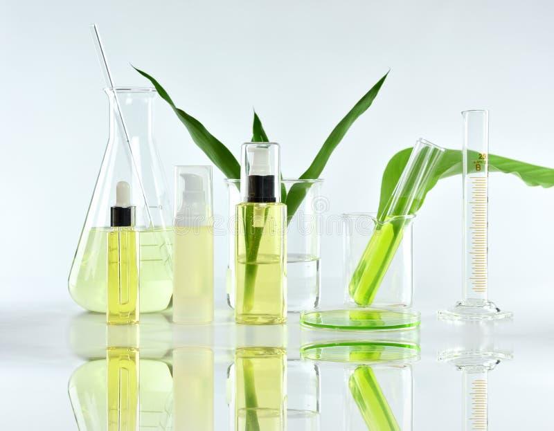 Recipientes cosméticos da garrafa com as folhas ervais verdes e produtos vidreiros científicos, pacote vazio da etiqueta para o m fotos de stock royalty free