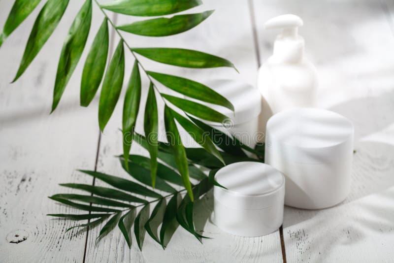 Recipientes cosméticos da garrafa com as folhas ervais verdes, etiqueta vazia imagens de stock royalty free