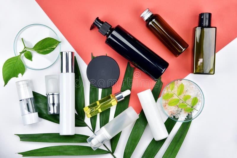 Recipientes cosméticos da garrafa com as folhas ervais verdes, etiqueta vazia para o modelo de marcagem com ferro quente, conceit imagens de stock