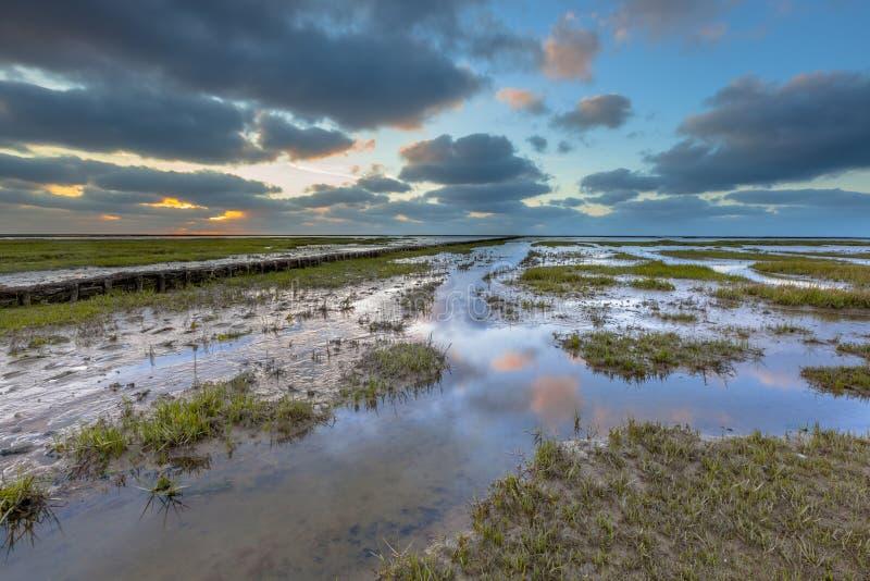 Reclaimed Land. On the Groningen coast in a tidal salt marsh of the Waddensea, Netherlands stock photos