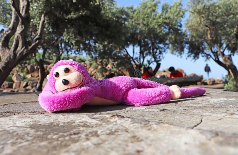 Reclinación rosada del juguete del mono fotografía de archivo