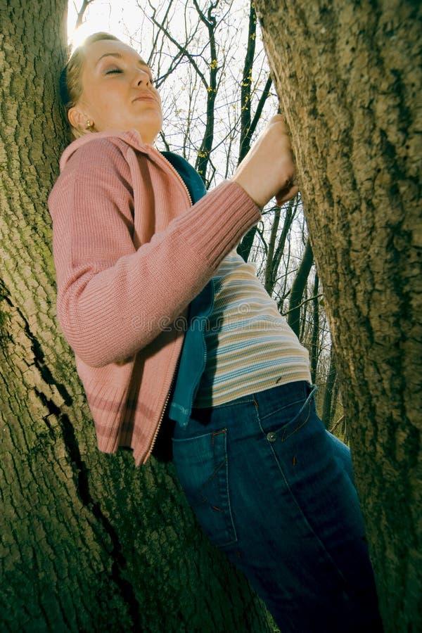Reclinación sobre un árbol foto de archivo