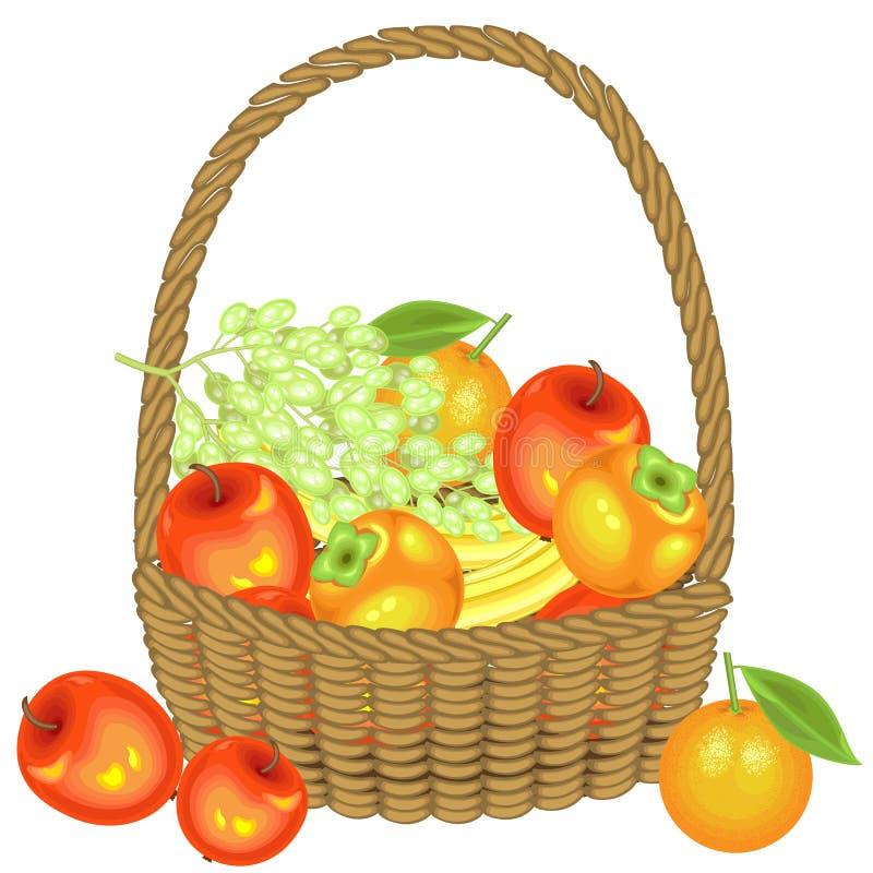 Recogió una cosecha abundante en la cesta son manzanas, plátanos, uvas, caquis y naranjas Fruta hermosa fresca Vector libre illustration