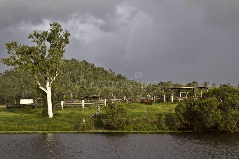 Recolhimento das nuvens de tempestade sobre jardas velhas do gado fotos de stock royalty free