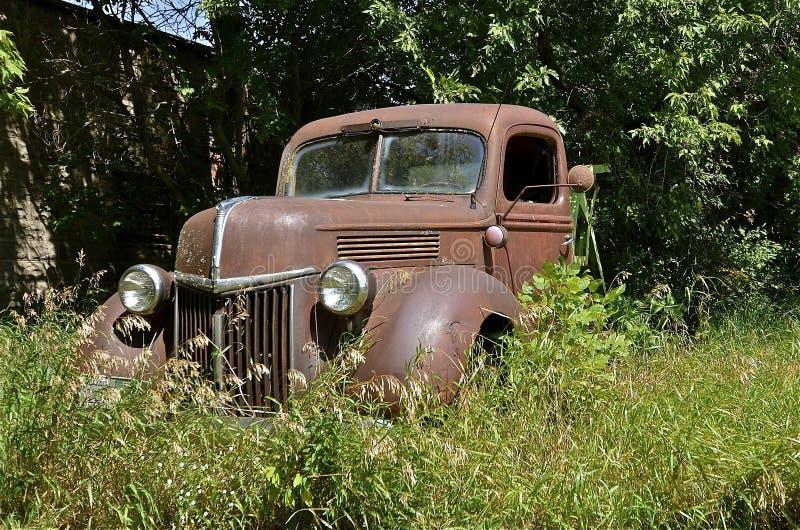 Recolhimento velho oxidado escondido na grama imagem de stock