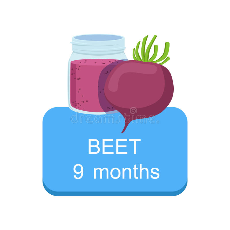 Recommended Time To Feed The Baby With Fresh Beetroot Cartoon Info Sticker With Fresh Vegetable And Puree In Jar royalty free illustration