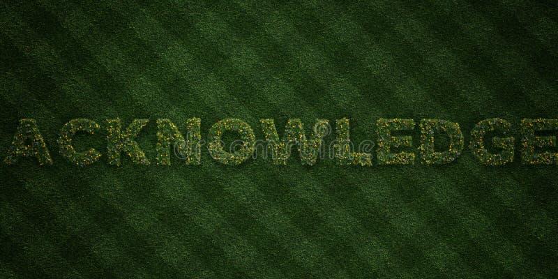 RECONNAISSEZ - lettres fraîches d'herbe avec des fleurs et des pissenlits - l'image courante gratuite de redevance rendue par 3D illustration stock