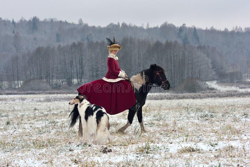 Reconstrucción de la caza tradicional con el perro lobo ruso foto de archivo libre de regalías
