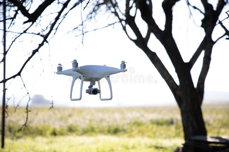 Recording drone on the sky over white flowers field. Robot, illustrative, modern, motion, digital, equipment, remote, controlled, perspective, quad, rendering stock image