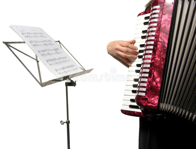 Recorte con una mujer que juega el acordión foto de archivo libre de regalías