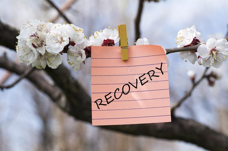 Recovery in memo. Pined on tree with blooms stock images