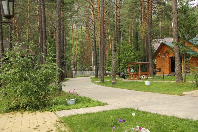 Recreatiecentrum nabij de bergrivier in Siberië in de zomer royalty-vrije stock foto's