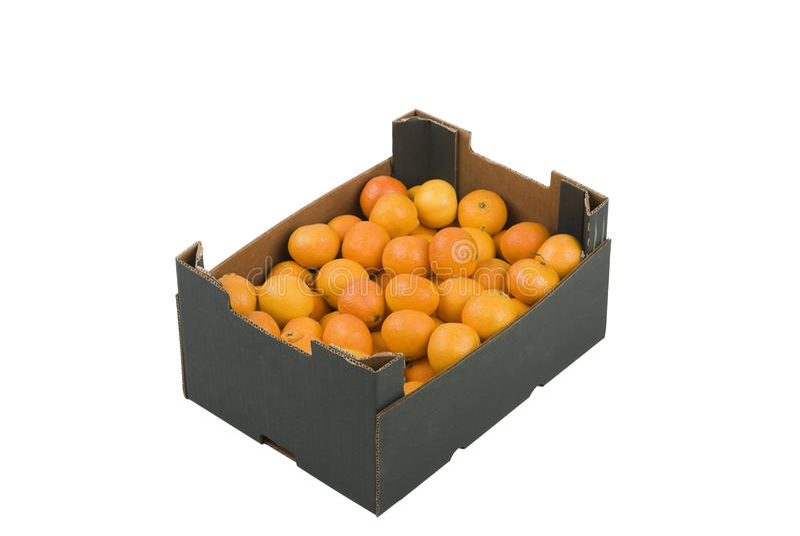 Rectángulo de mandarines foto de archivo libre de regalías