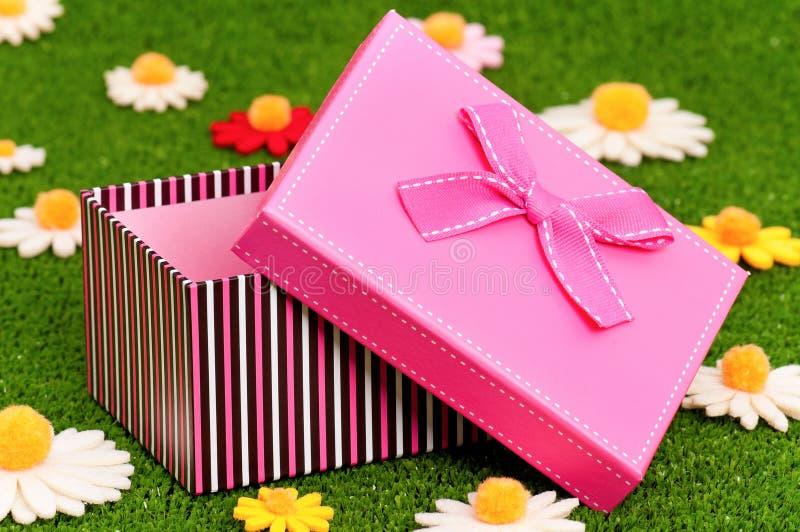 Rectángulo de regalo en hierba foto de archivo