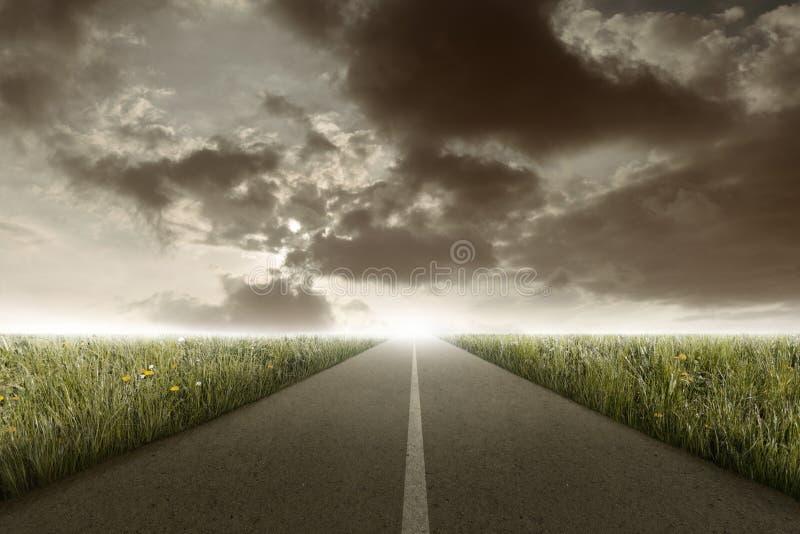 Rectilinear droga między łąką ilustracja wektor