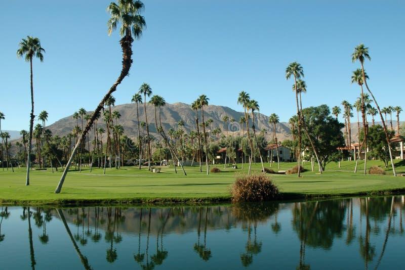 Recurso de Palm Spring foto de stock
