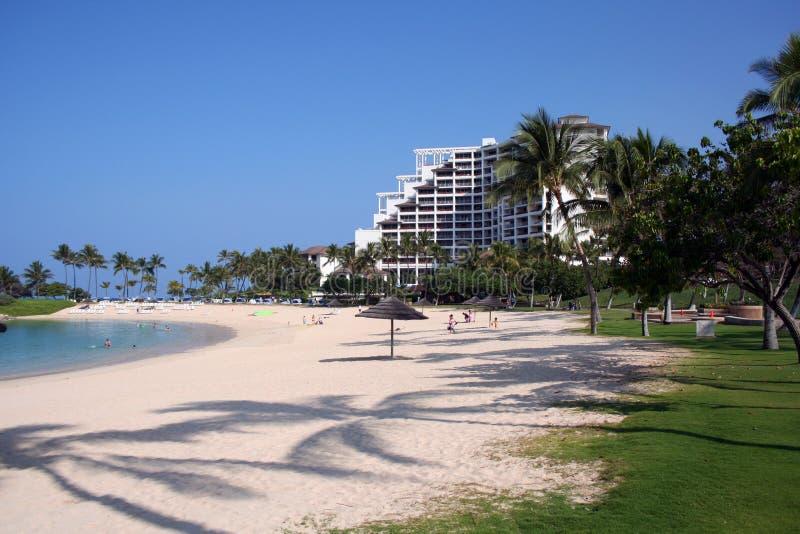 Recurso havaiano tropical fotografia de stock