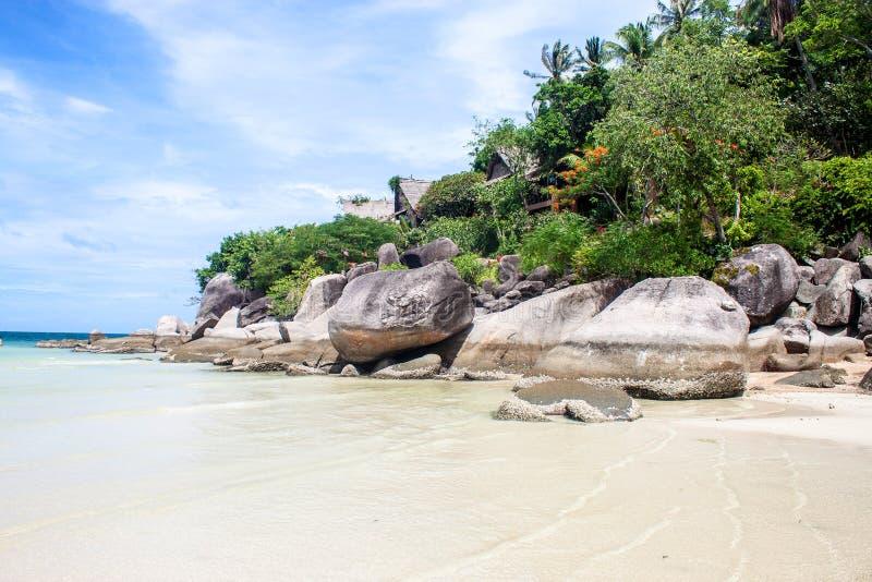 Recurso tropical e uma praia fotos de stock