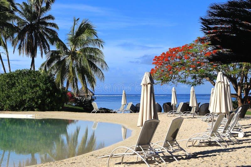 Recurso tropical Tahiti fotos de stock royalty free