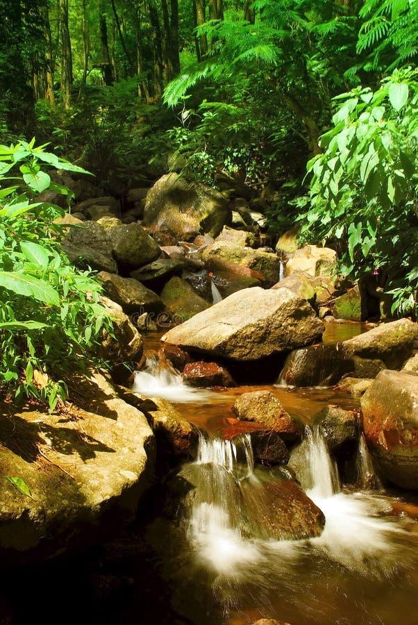 Recursos naturales 03 imagen de archivo libre de regalías