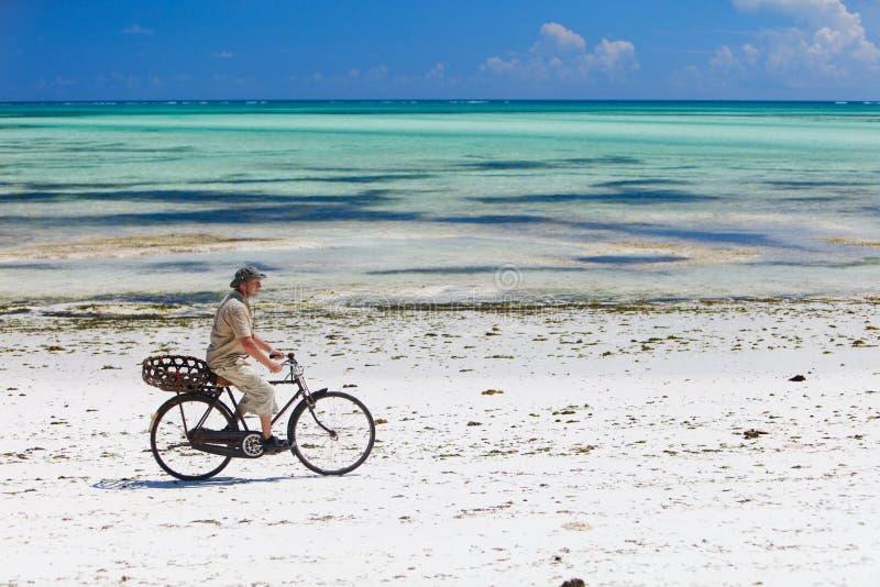 Recyclage le long de la plage tropicale photo libre de droits