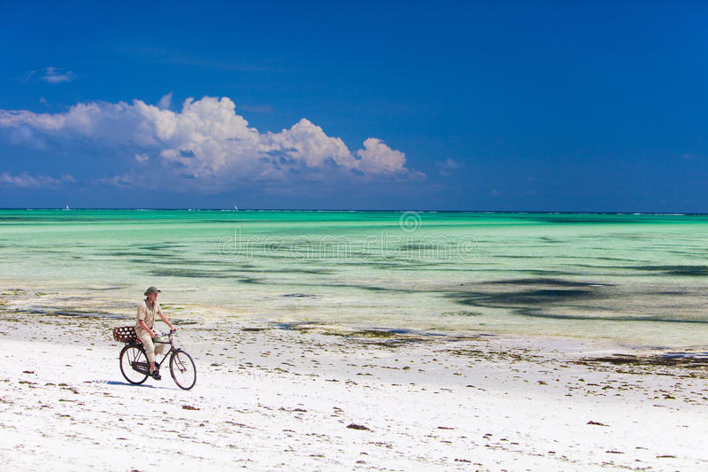 Recyclage le long de la plage tropicale photographie stock libre de droits