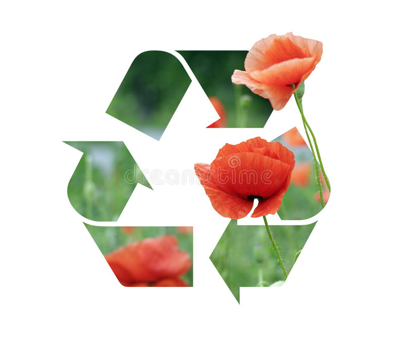 Recyclage van het embleem van een papaver royalty-vrije illustratie