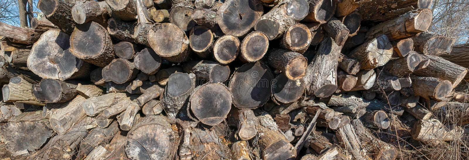 Recycled twig, fuel, tree branches, a pile of wood logs. Firewood stock photos