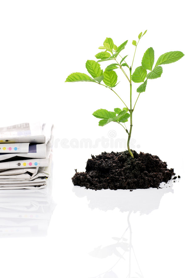 Recycling. Paper versus tree, concept of recycling your old papers royalty free stock photos