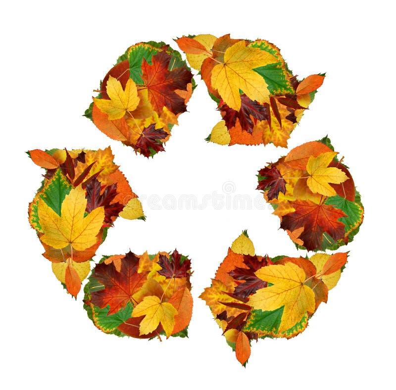 Download Recycling symbol stock image. Image of botanic, naturalistic - 16269089