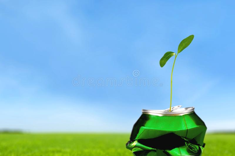 Recycling. Symbol Garbage Can Environmental Conservation Green Plant stock photography