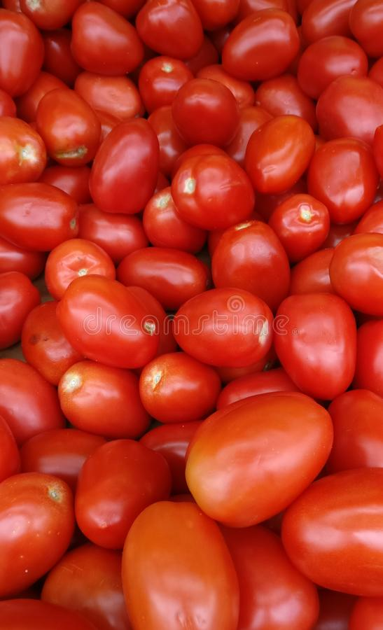 Red 🍅 stock photography