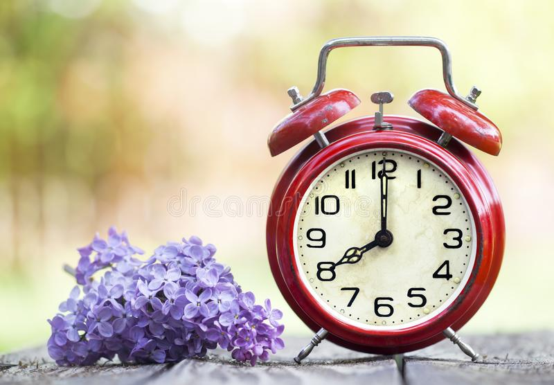 Red alarm clock and purple flower, daylight savings time, spring forward concept stock images