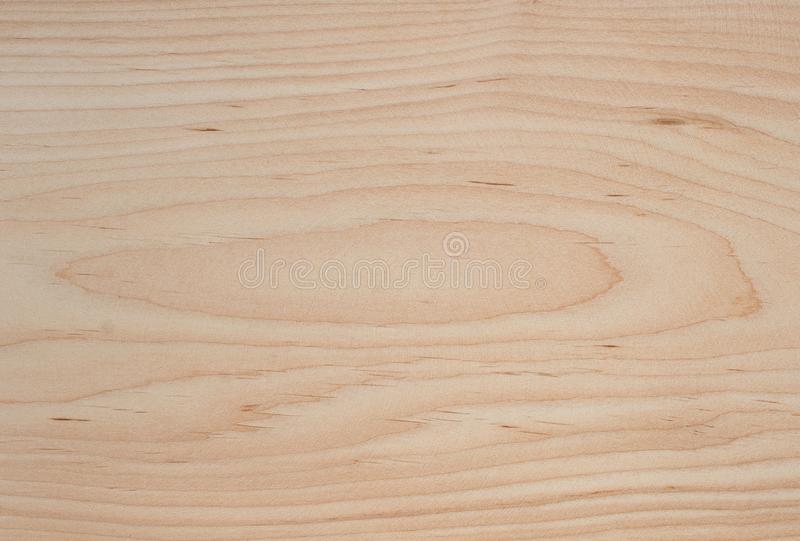Red alder tree wood texture stock photography