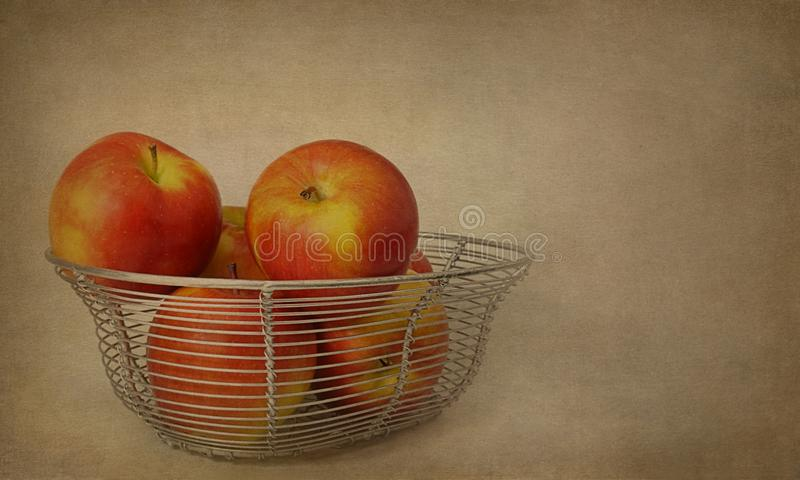 Red ambrosia apples in wire basket royalty free stock image