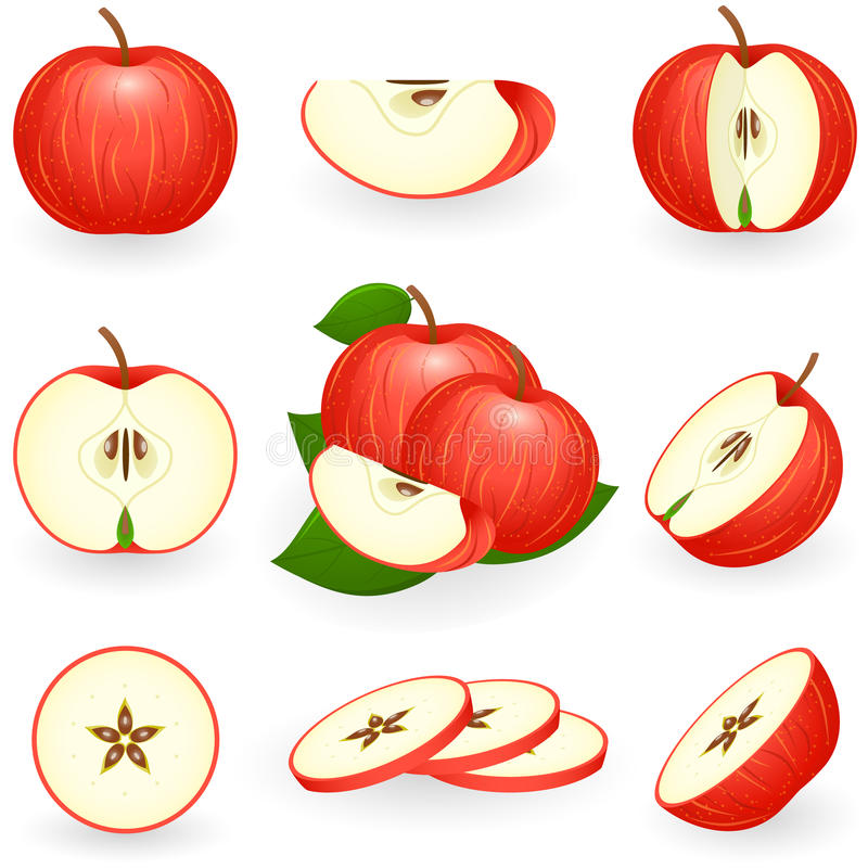 Red apple royalty free illustration