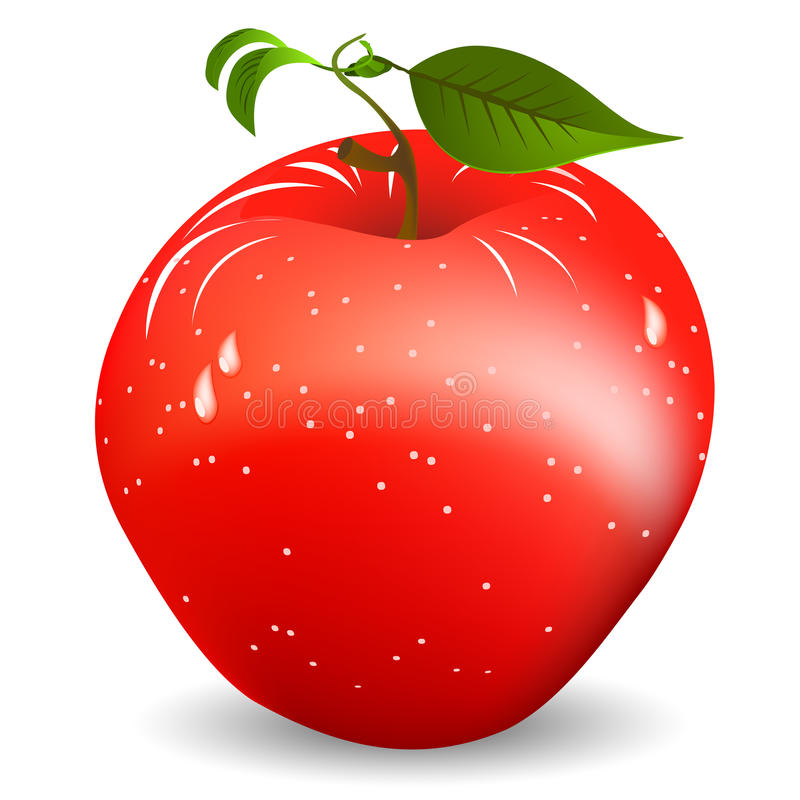 Download Red apple stock vector. Illustration of tail, isolated - 22010632