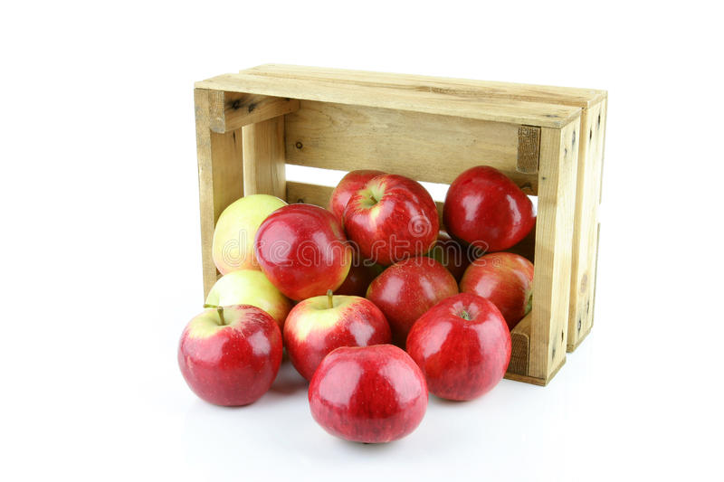 Download Red apple stock photo. Image of container, stem, elstar - 28564612