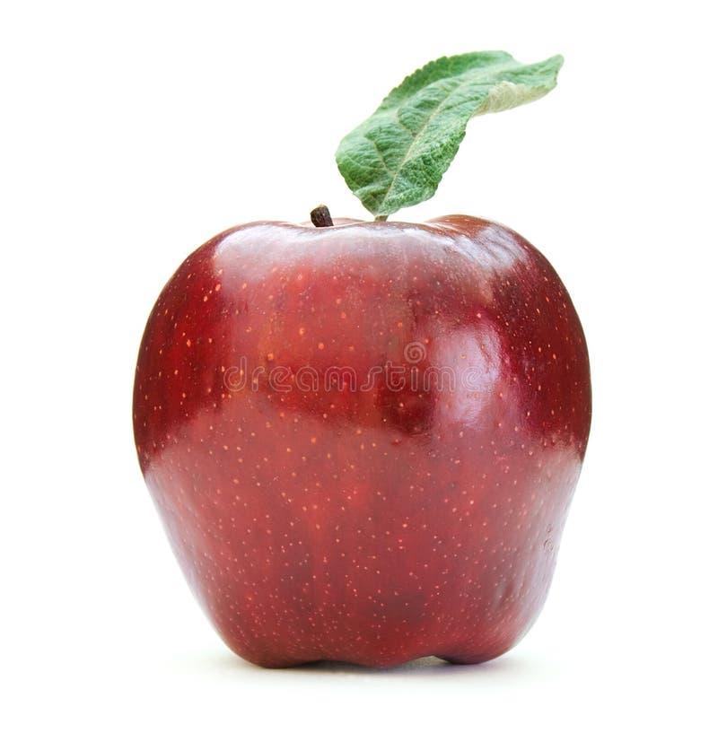 Download Red apple stock image. Image of diet, food, fruit, macro - 6935747
